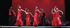 Calo Flamenco Cuadro