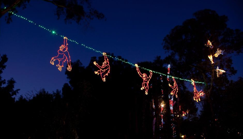ZooLights at Phoenix Zoo