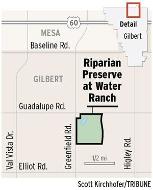 Gilbert hopes tourists flock to Riparian park