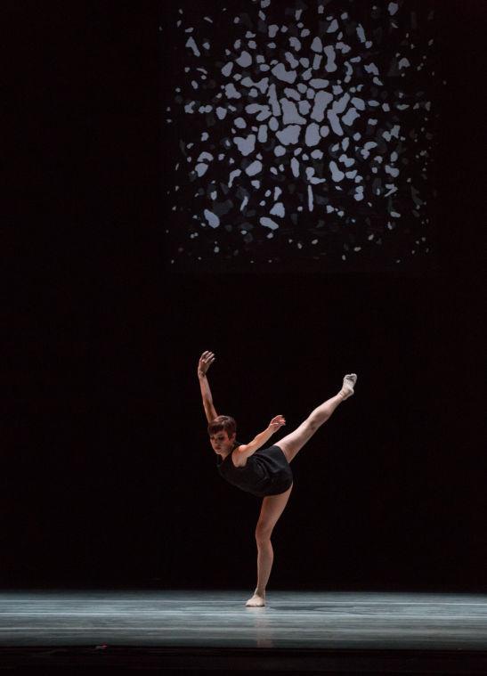 Raychel Diane Weiner