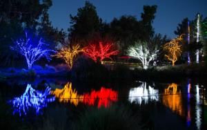 <p>Zoolights is open nightly through Jan. 11 at Phoenix Zoo. [Submitted]</p>