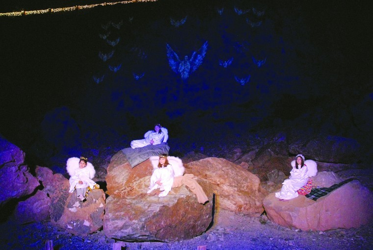 Lamb of God nativity