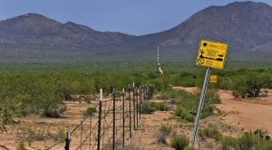 Border deaths up despite dip in crossings