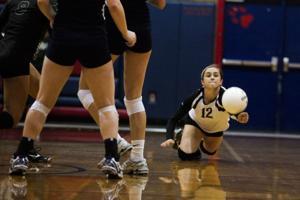 Basha Volleyball