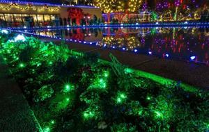 Mormon Christmas lights