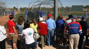 Cactus League battling economic downturn