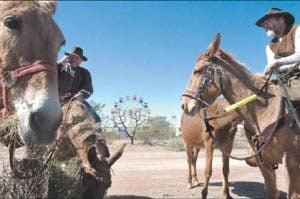 Apache Junction prepares for Lost Dutchman Days