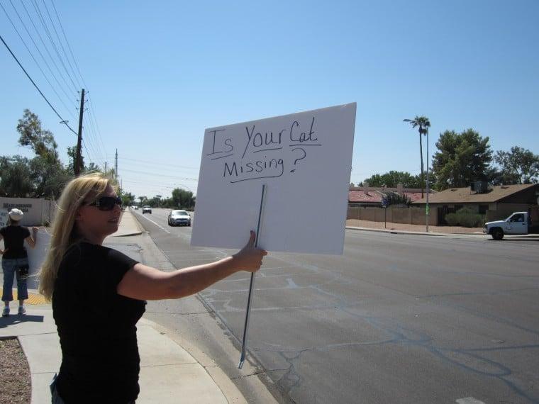 Protest over Mesa cat mutilations, killings