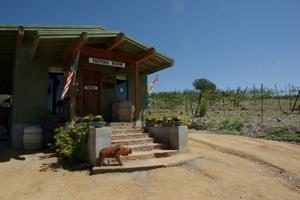 Javalina Leap Winery