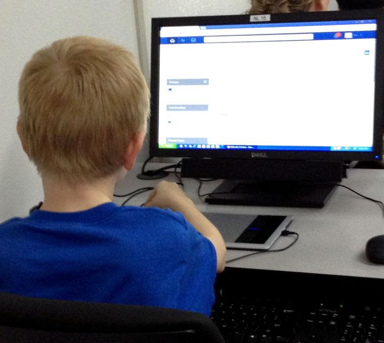 Mesa Virtual Academy
