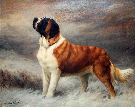 Pets-Top Dog