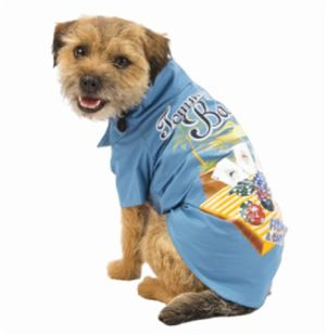 Pets Dog Beach Wear