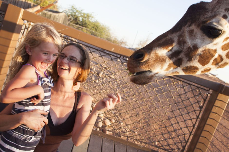 Prowl & Play at Phx Zoo