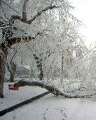 Colorado hit with heavy snow
