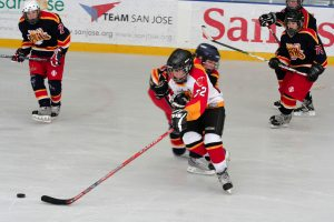 East Valley Victories: Mustangs hockey team headed for Canada
