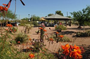 Picnic gives boost to Mesa's Park of the Canals