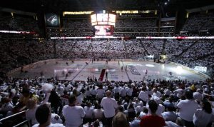 Coyotes fans finally get what they want — hockey