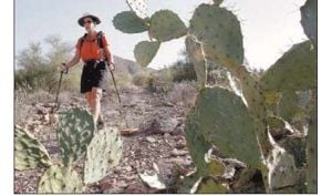 Guided treks lure outdoor enthusiasts to trails