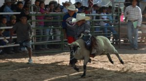 Explore Indian heritage at Navajo Nation Fair