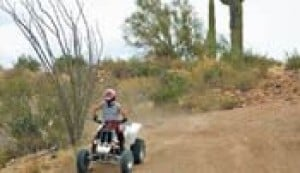 Tonto Forest rules flouted