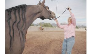 Horse world shows off at Scottsdale spectacle