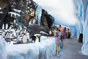 SEAWORLD PARKS & ENTERTAINMENT ANTARCTICA