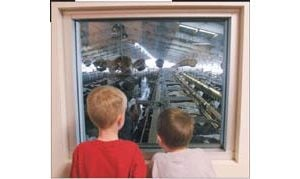 Shamrock Farms tours provide behind-the-scenes whiff