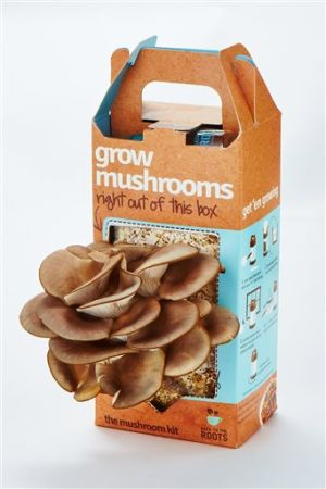 Gardening-Growing Mushrooms