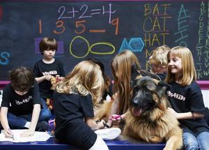 Pets School Dogs