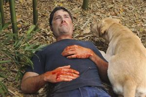 MATTHEW FOX, MADISON THE DOG