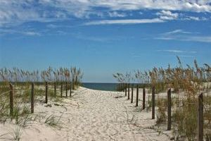 Travel-Brief-Florida Beach Finder