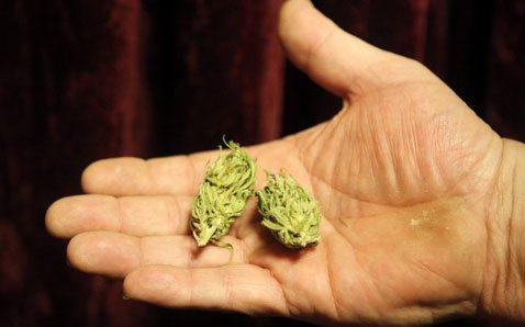 Drive takes aim at medical marijuana proposal