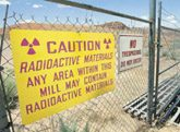 Nuclear renaissance has resurgence in West