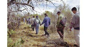 Arizona's border arrests at new high