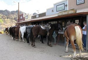 Ponderosa Stables is gem of South Mountain Park