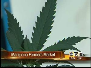 Marijuana in Southern Arizona