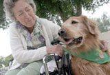 Pets on Wheels delivers big bundles of love