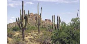 San Tan park plan approved by county board