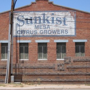 Sunkist facility in Mesa