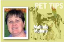 Pet Tips Malinda Malone