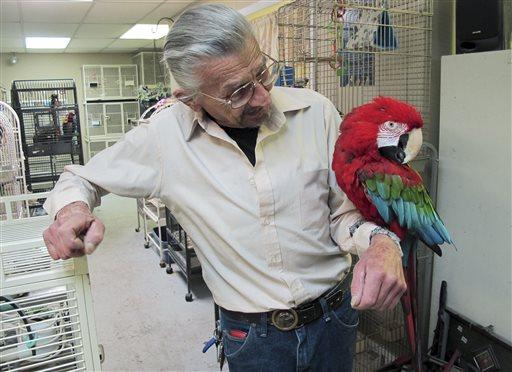 Homeless Parrots