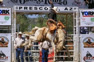 World's Oldest Rodeo