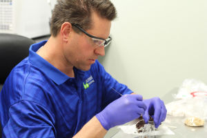 Medical Marijuana Testing Laboratory