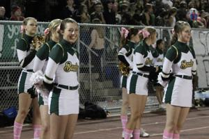 Basha at Chandler 10/25/2013