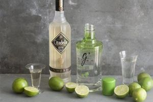 <p>This June 30, 2014 photo shows Citadelle reserve gin and Gin De France G Vine gin in Concord, N.H. (AP Photo/MatthewMead)</p>