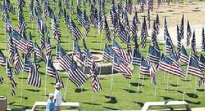 Field of flags for fallen