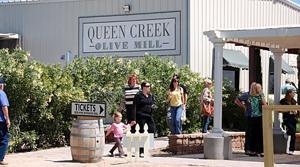 Q.C. Olive Mill