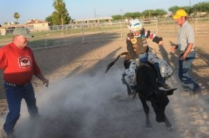 Gilbert 7-year-old heads to Texas rodeo finals