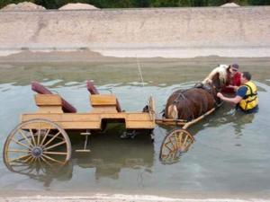 Horse and Buggy in Mesa canal
