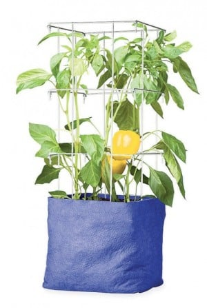 Downsizing gardening containers